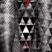 Argyll Ted - Envol de l'architecture