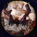 Karl Koch - Les carnets - Enslaved 2